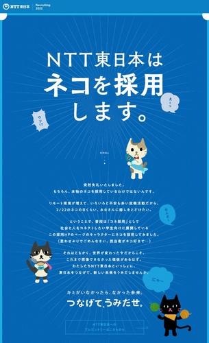 NTT東日本ネコ採用