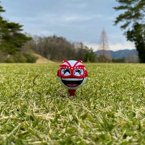 TORUNDA(撮るんだ)ゴルフボール