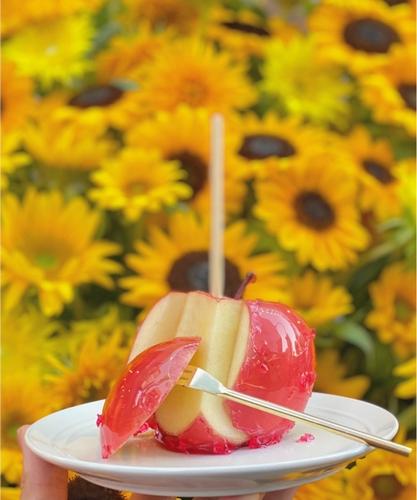 りんご飴専門店 キャンディアップル